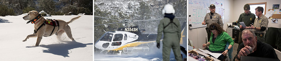 Three photos showing rescue dog running in snow. helicopter and ranger in snow, and rescue personnel in incident command post