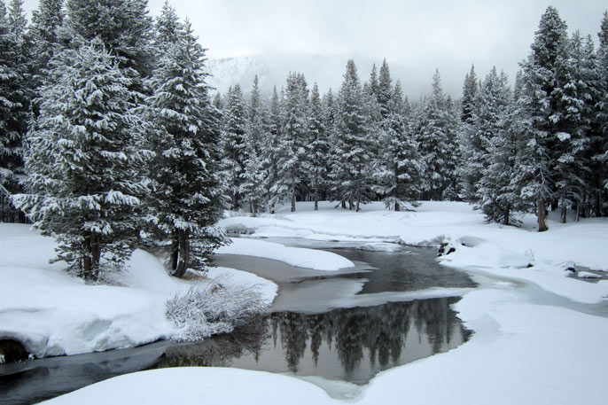 Tuolumne River reflects newly fallen snow on April 1st
