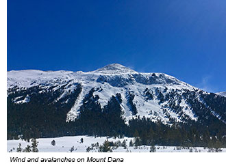 Snowy mountain with several avalanche chutes and snow blowing in the wind