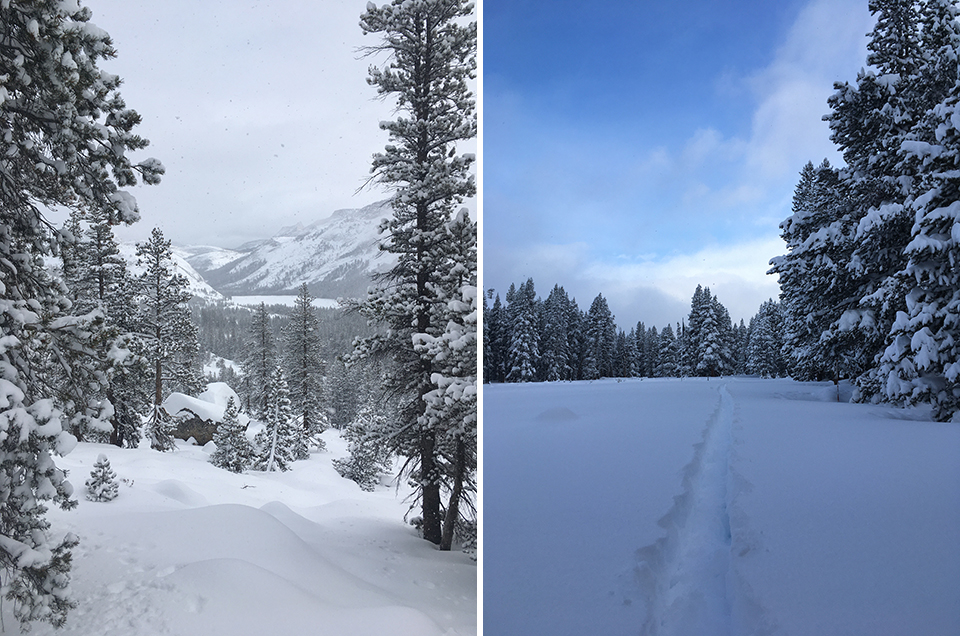 Left photo shows Tenaya Lake with fresh snow on January 25, 2021. Right photo shows fresh snow after the storm with ski tracks on January 29, 2021.