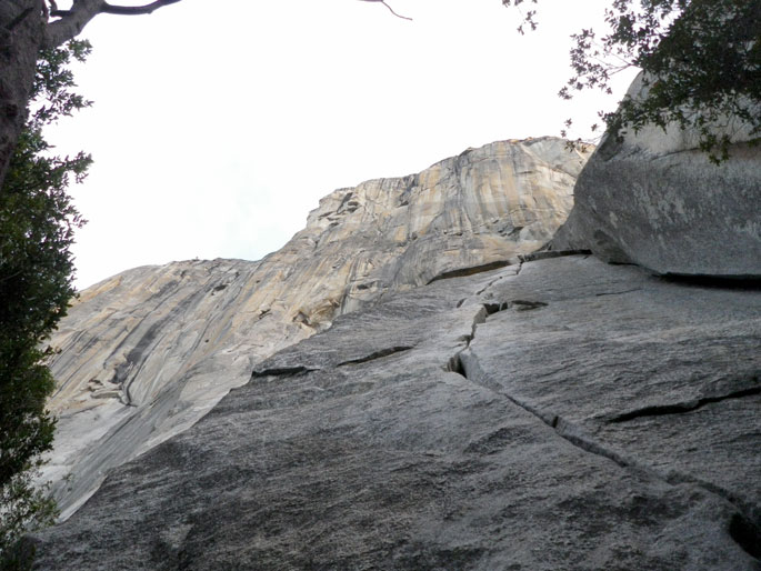 Looking up El Capitan