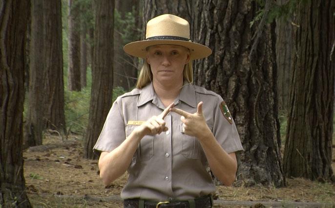 Meet Yosemite S Sign Language Interpreter Yosemite