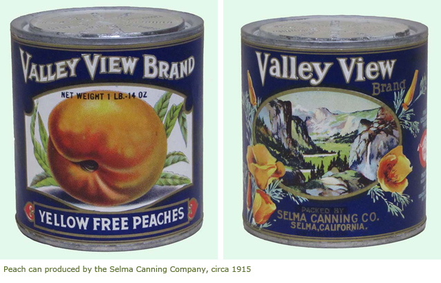Peach can produced by the Selma Canning Company circa 1915
