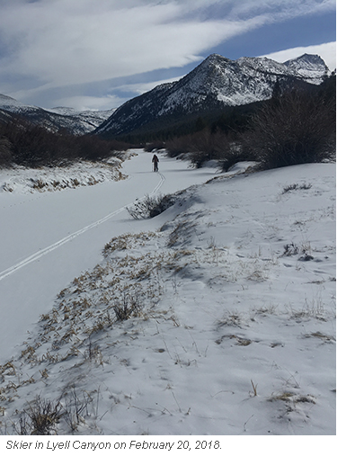 Skier in Lyell canyon breaking new trails in snow