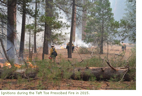 Ignitions during the Taft Toe prescribed fire in 2015 in Yosemite Valley.