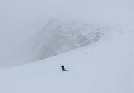 One person in snowy conditions doing wildlife survey