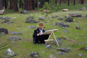 Young pioneer working on his project in the meadow.