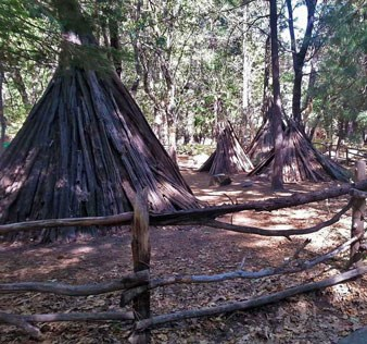 Four bark houses located behind the Yosemite Museum. They look like tipi's but they have pine or cedar pole frameworks lashed with grapevines covered with bark to keep out the weather.