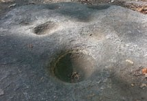 Pounding rocks or bedrock mortar are ideal for grinding acorns. Shallow mortar holes, like the ones shown in the picture, were preferred for processing black oak acorns, while deeper holes were used for manzanita berries.