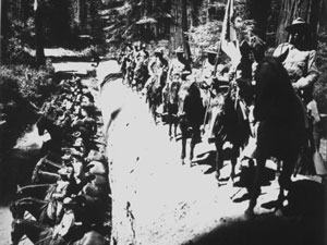 Dozens of uniformed soldiers stand on a fallen sequoia tree