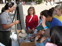 A ranger shows children artifacts at a display table