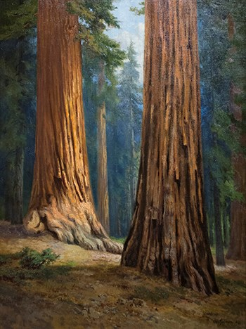 Chris Jorgensen's 1910 painting of the Mariposa Grove