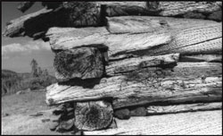 Close-up of corner of log structure