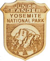 Wooden junior ranger badge