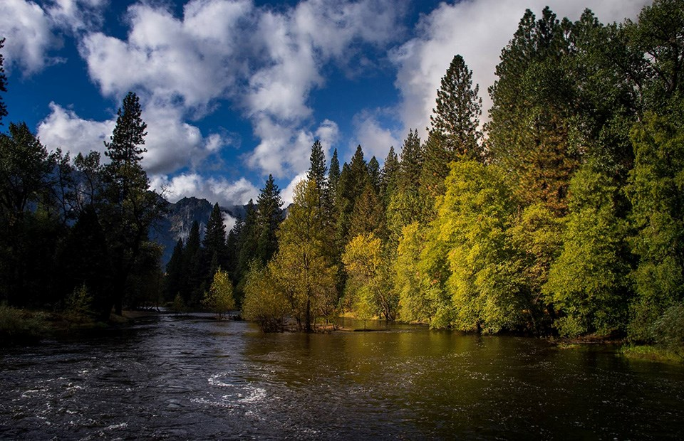 Merced River looking downstream from Superintendent's Bridge.