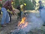 People stoke a fire to begin burning a meadow