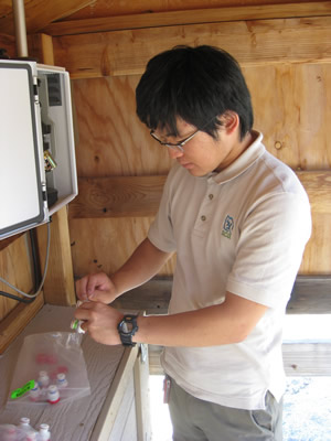 SCA Volunteer from Japan working with Resources Management and Science in Yosemite.