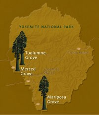 Map with three marked sequoia grove locations