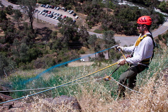 Invasive crew member sprays blue-dyed herbicide on a steep slope