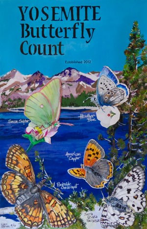 Watercolor showing Sierra sulphur, heather blue, American copper, rockslide checkerspot, and Sierra Nevada parnassian with a lake in the background. Illustration by Liam O'Brien 8/16