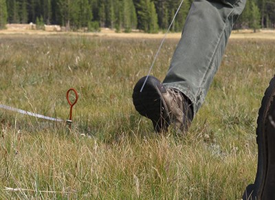 Image of boots and tools in meadow to monitor bare soil