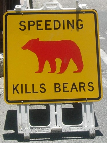 Speeding Kills Bears sign