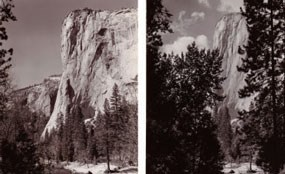 Two views of El Capitan to show the landscape before and after thinning