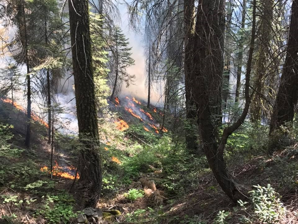 Empire Fire burning along the Glacier Point Road in 2017