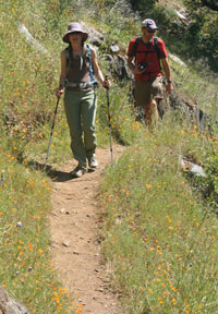 Two hikers on a dirt trail