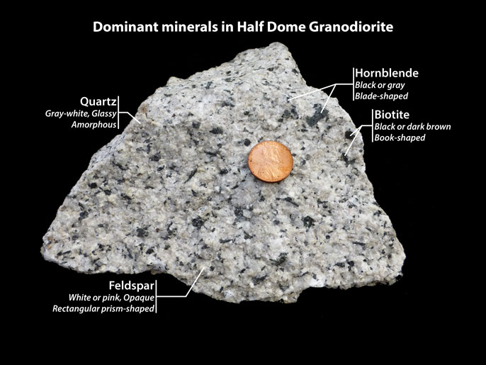 Half Dome Granodiorite showing quartz, feldspar, hornblende, and biotite
