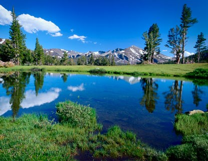 Water saturates Tuolumne Meadows with a scenic reflection