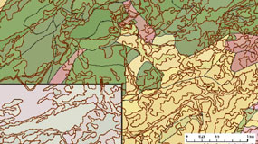 Close-up of one section of Yosemite map with many subtle colors indicating vegetation zones