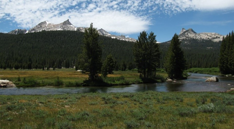 Image showing scenic interface of meadow, river, forest, and granite peaks in Tuolumne Meadows