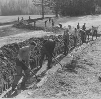 historic b&w image of men working with shovels in ditch