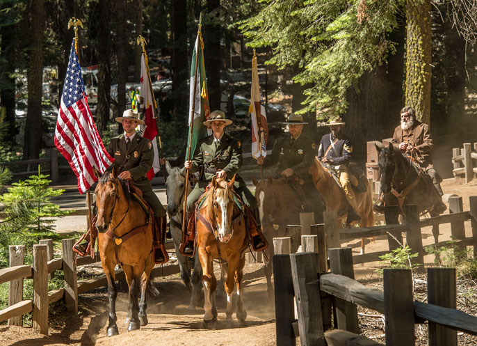 Rangers and others riding through the Mariposa Grove on horseback