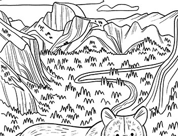 Coloring sheet with line drawings of Half Dome, trees, cliffs, and a bear.
