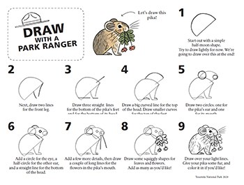 Image of step-by-step instructions for drawing a pika