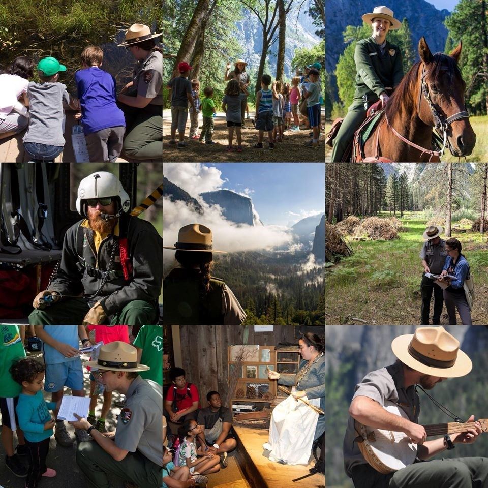Collage of 9 image of rangers taking part in different activities in the park.