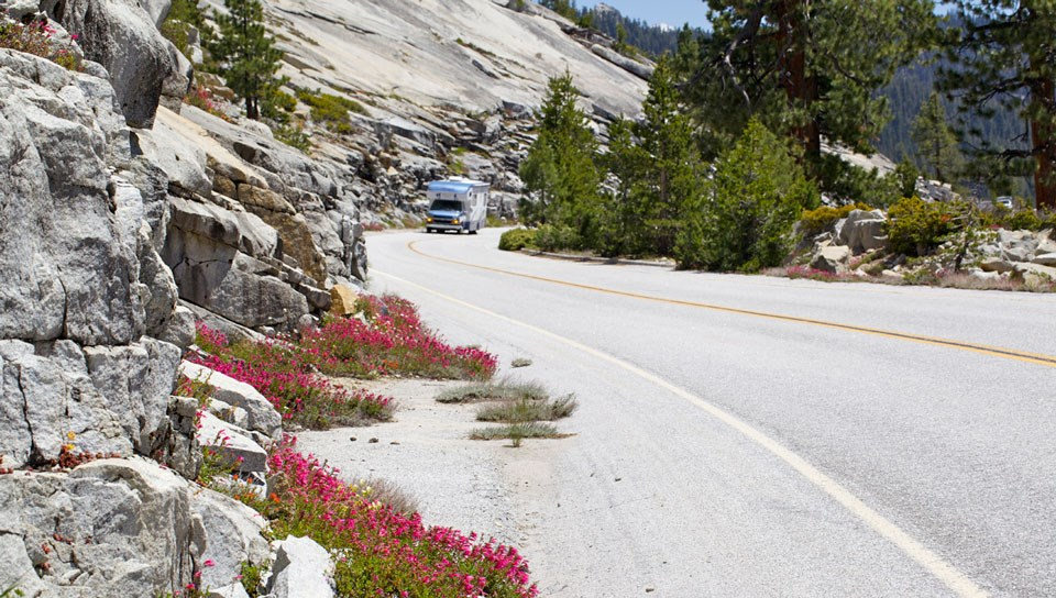 RV traveling along Tioga Road