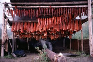 Salmon drying at a 40-Mile River subsistence camp in 1983.