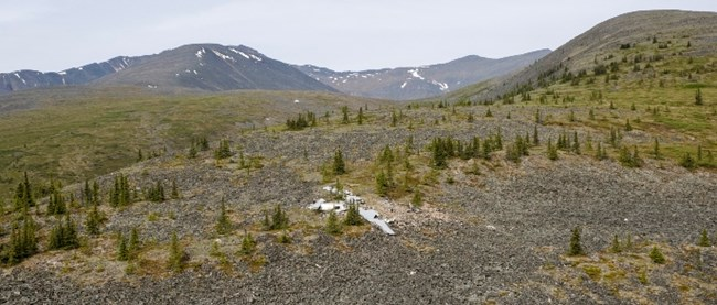 Aerial view of the B-24 crash site today in Yukon-Charley Rivers National Preserve.