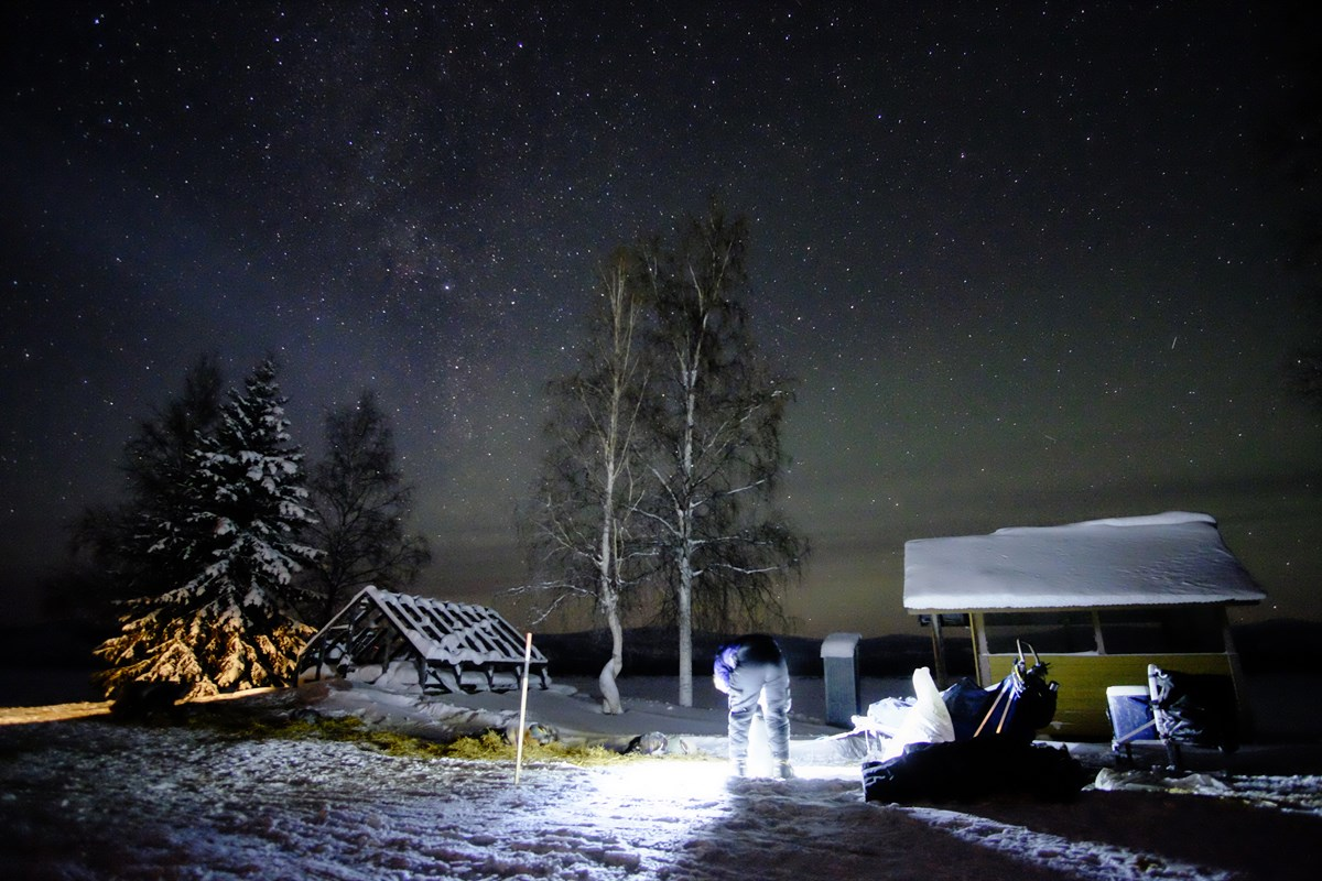A musher and dog team at night along the Yukon River at Slaven's Roadhouse. Aurora and milky way visible above.