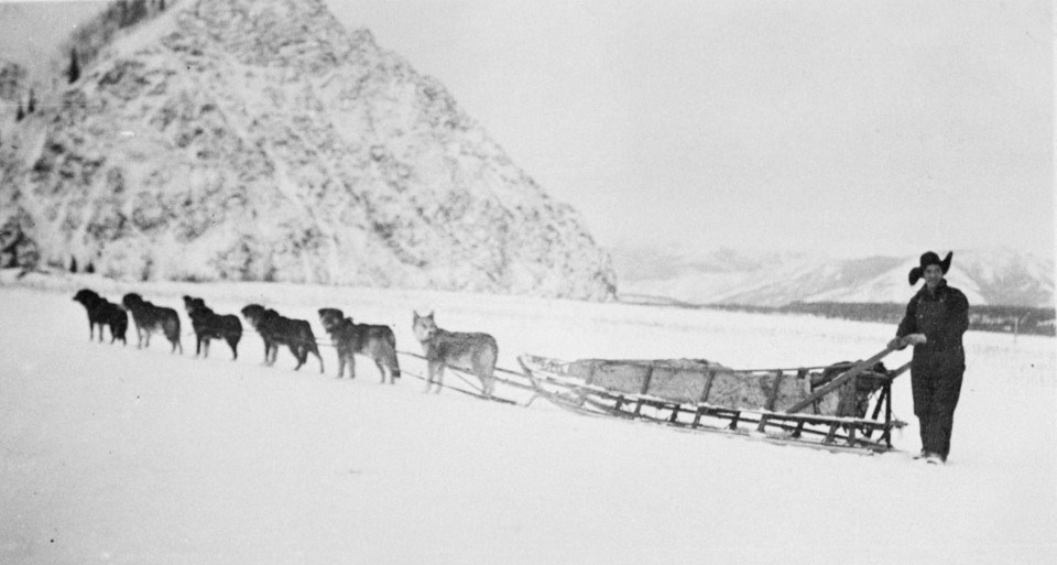 Historic image of Biederman Mail Service, Ed Biederman and his dog sled team, on the Yukon River in front of Eagle Bluff at Eagle, Alaska