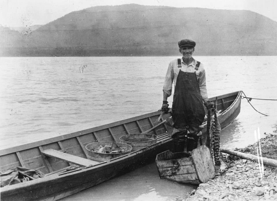 Woodchopper Roadhouse owner Jack Welch cutting salmon along the Yukon River in 1934