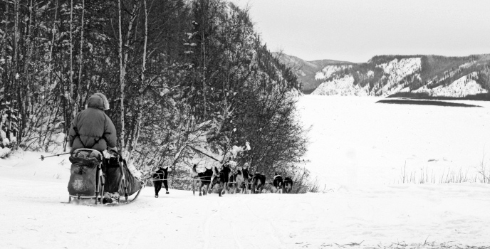 A musher in the preserve.