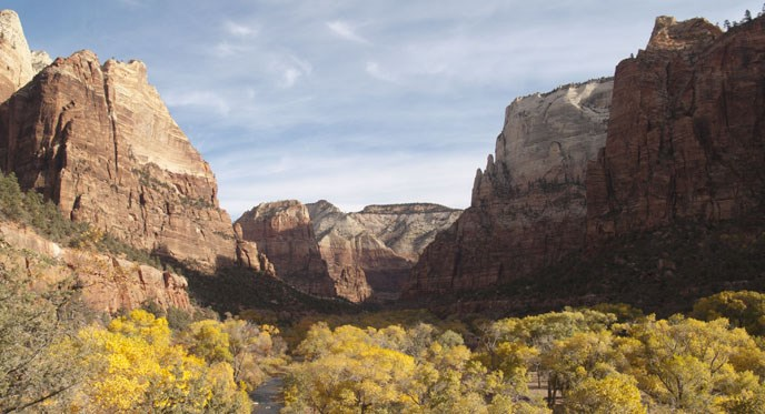 Zion Canyon in Autumn.