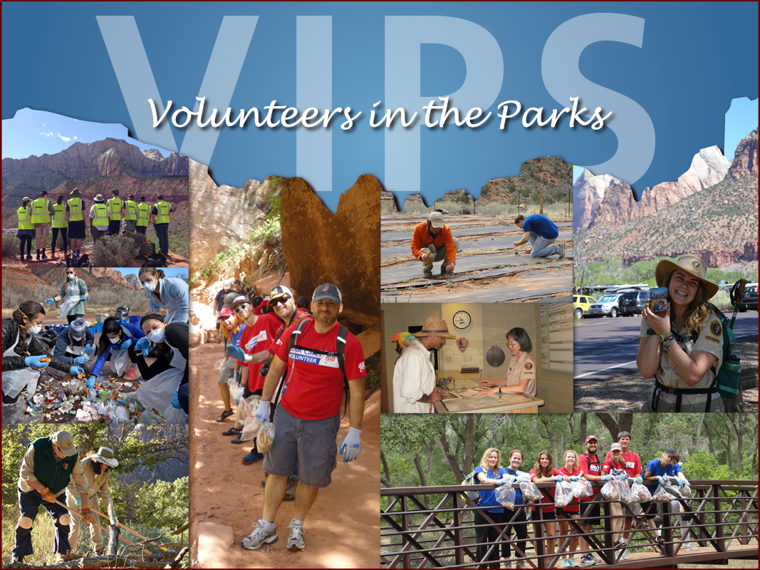 Volunteers do lots of different jobs in Zion