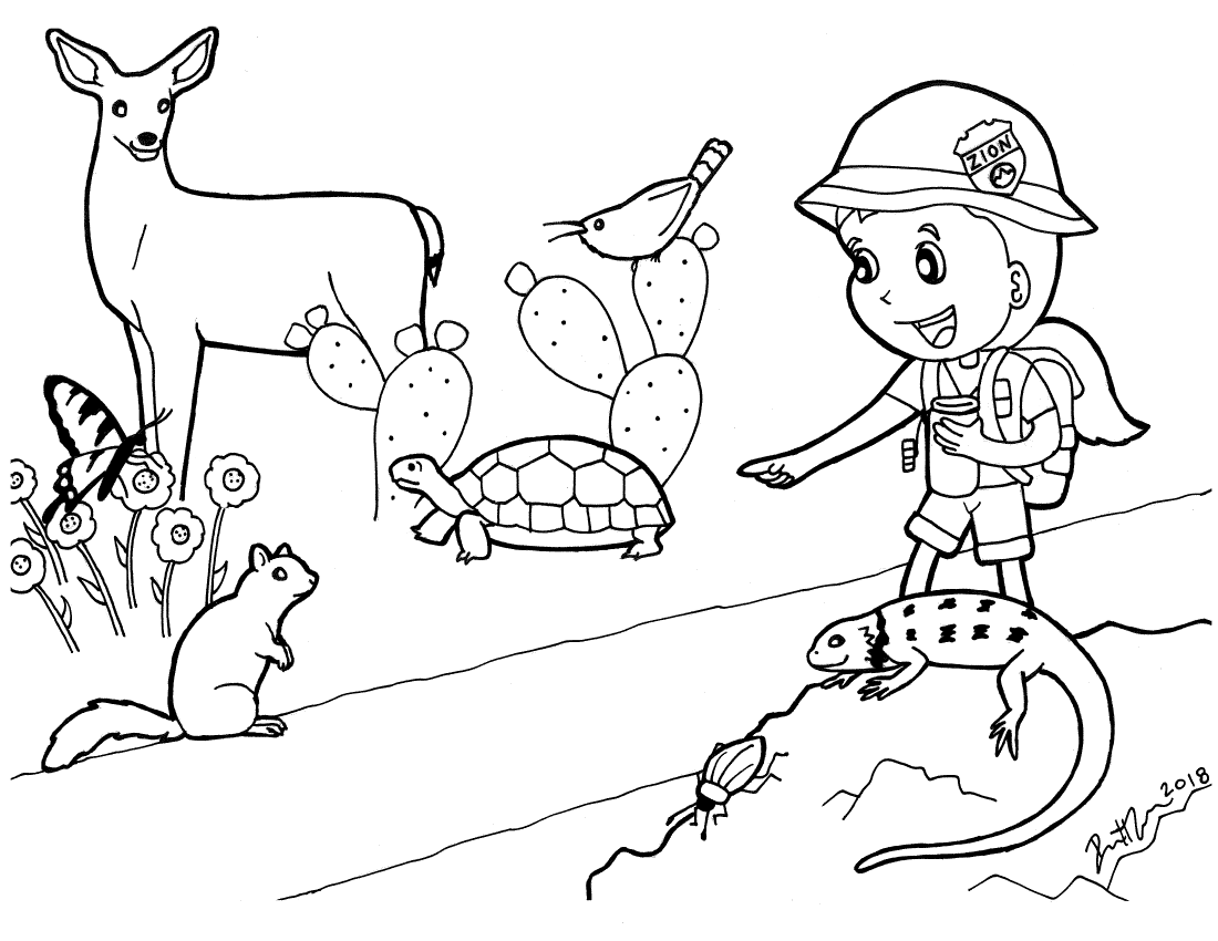 Coloring page of jr ranger and Zion animals