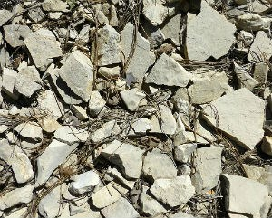 small broken pieces of gray Carmel limestone