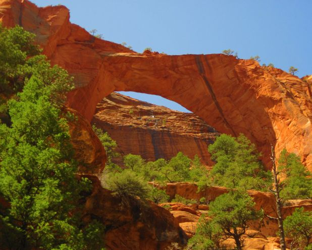 Freestanding Arches Zion National Park U S National